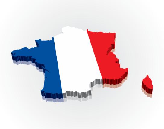 доставка сборных грузов в Францию